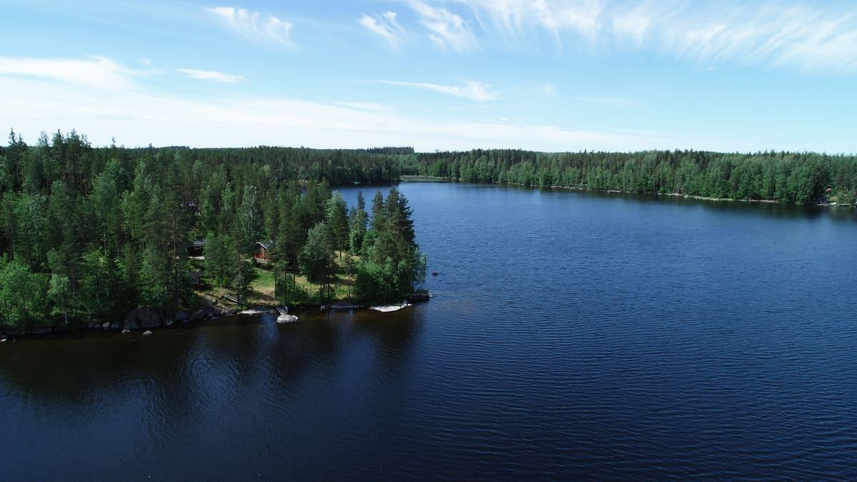Ilmakuva Virmajärven rannalla olevasta mökistä