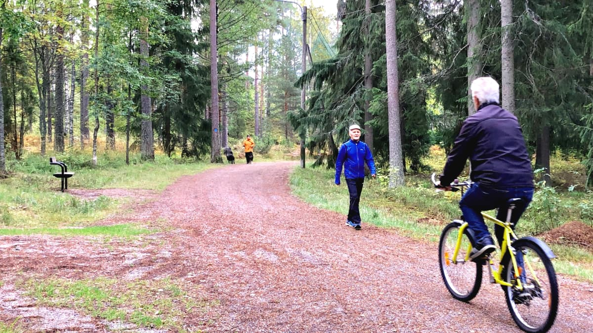 Järvien reitti Hollolassa sopii monenlaisille luonnossa liikkujille.