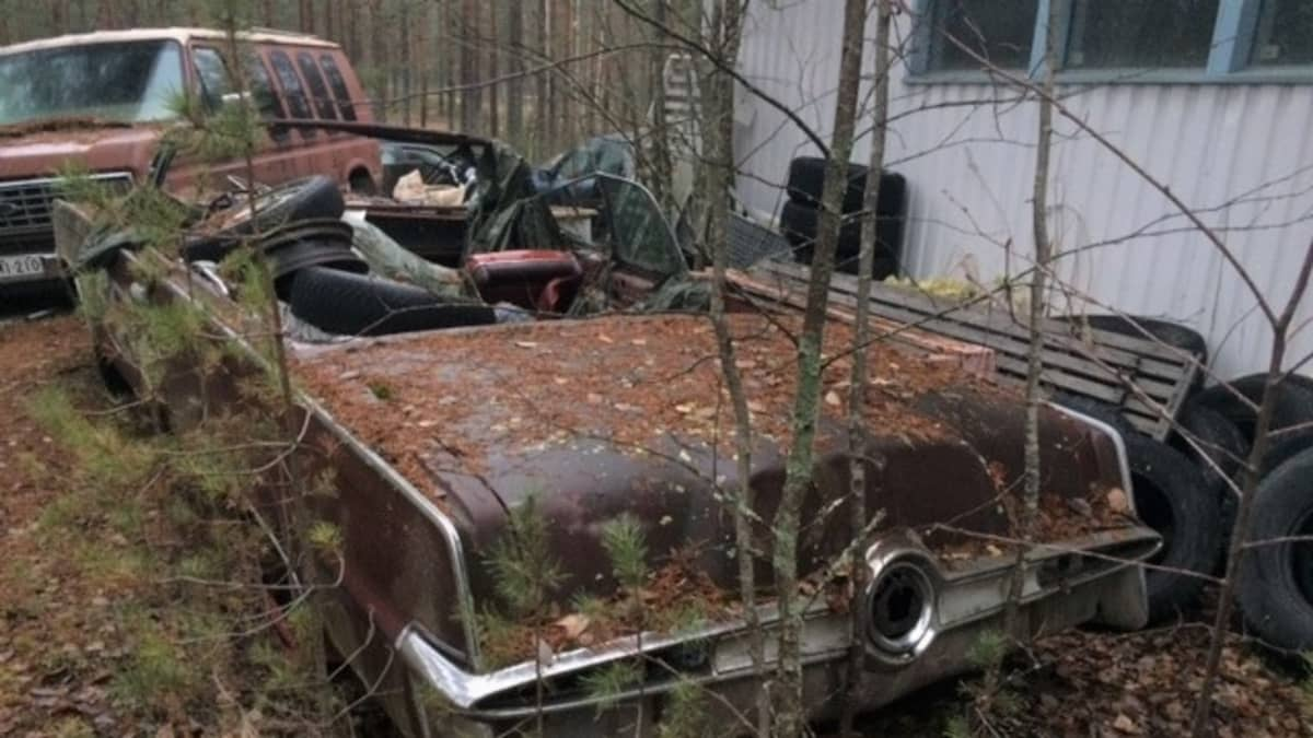 Romuautoja ja sekalaista jätettä metsäisellä teollisuustontilla.