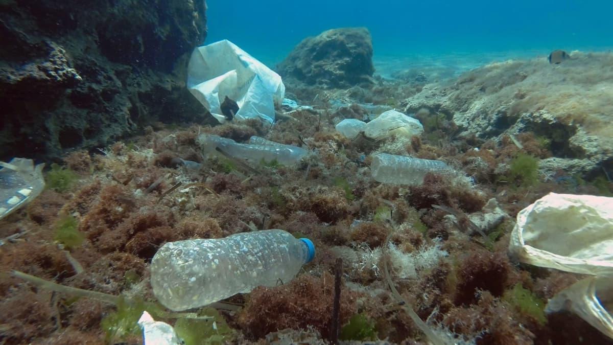 Muovipulloja ja -kasseja merenpohjan kasvillisuuden päällä.