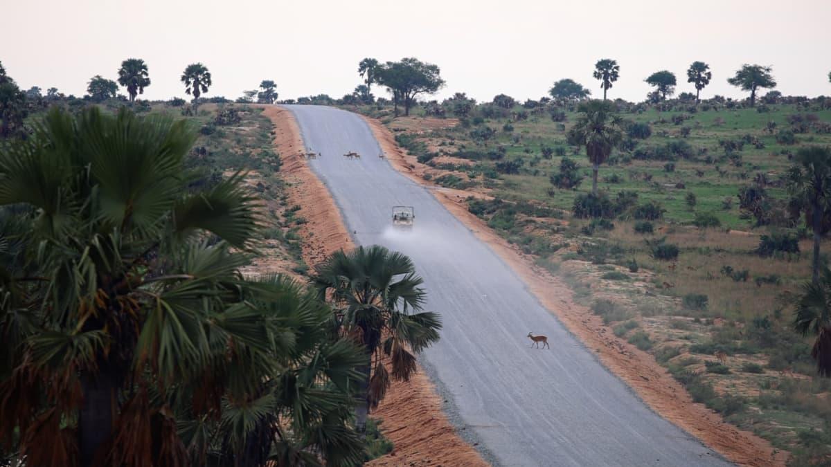 Itse öljyputkea ei ole tänne vielä rakennettu, mutta Murchison Fallsin kansallispuistoa halkoo jo rekkojen liikennöimä tie, joka tukee putken rakentamista.