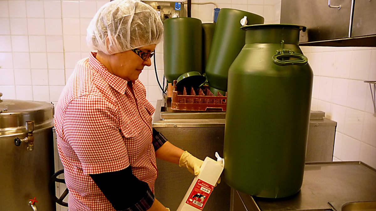 Sisko Pitkänen kaataa tuoretta lehmänmaitoa tölkkiin.