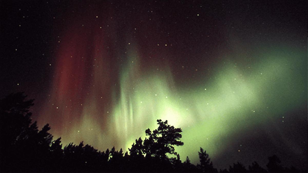 Revontulia öisellä taivaalla