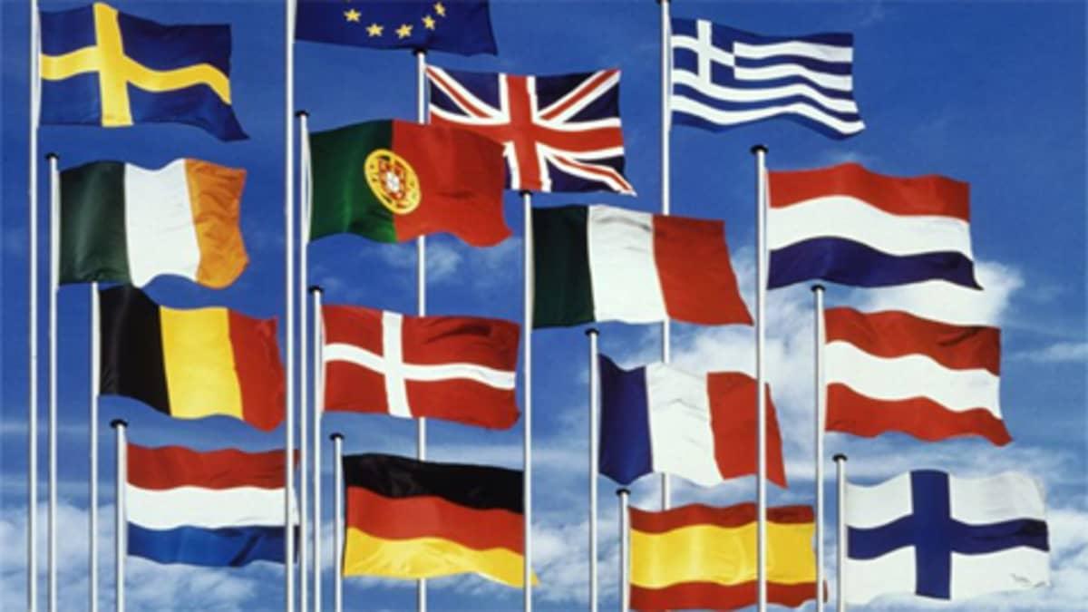 Eu:n jäsenvaltioiden lippuja, mukana myös Suomen lippu