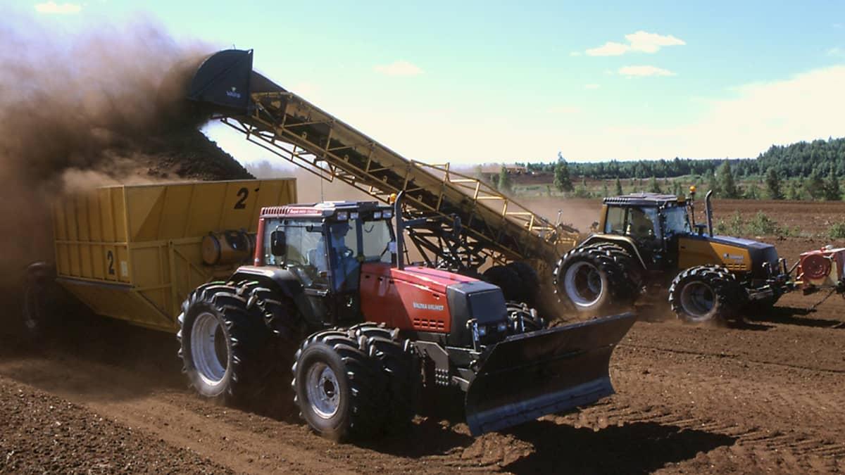 Kaksi traktoria turvesuolla, kuormaus käynnissä.