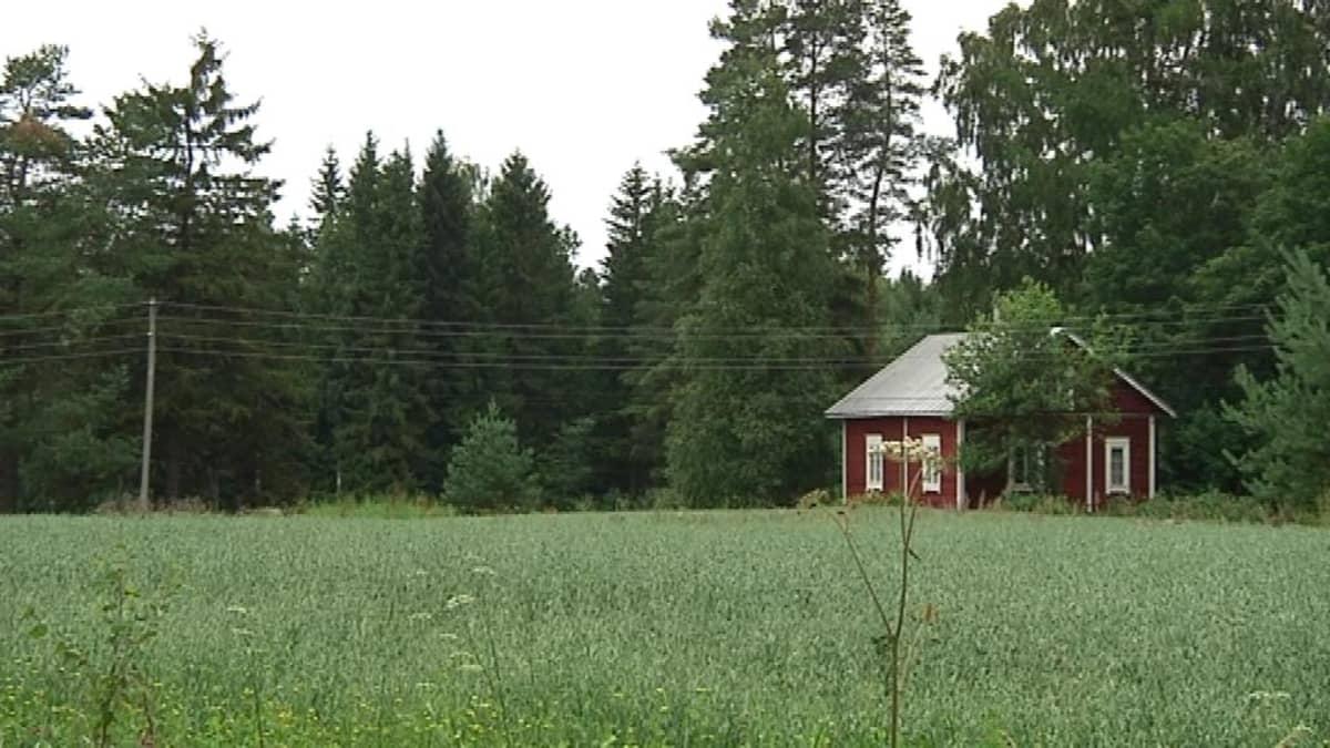 kesäinen maisema Hämeen Härkätien varrelta