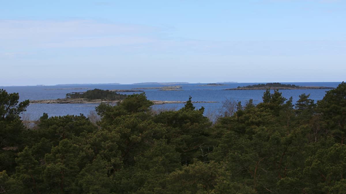 Ulko-Tammio kuuluu Itäisen Suomenlahden kansallispuistoon.
