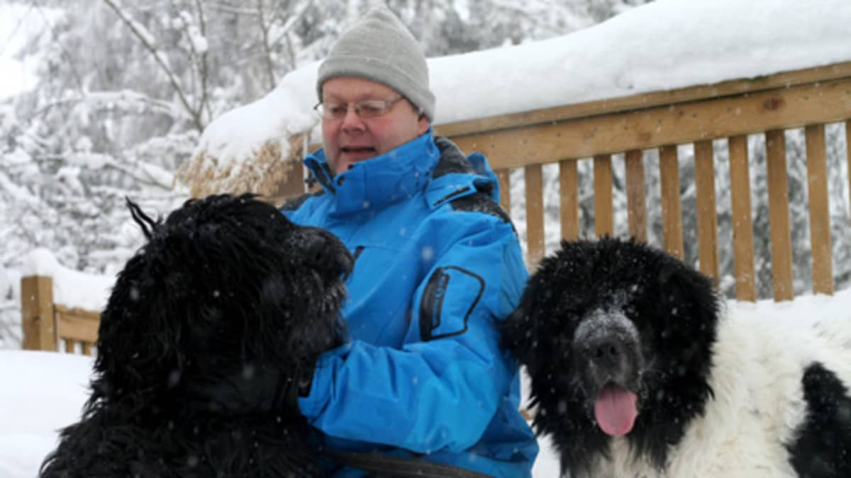 Koirakouluttaja Timo Tiihonen koiriensa Renen ja Sisun kanssa.