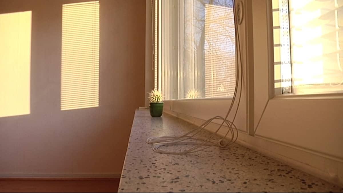 Tyhjä vuokra-asunto, kaktus ikkunalla