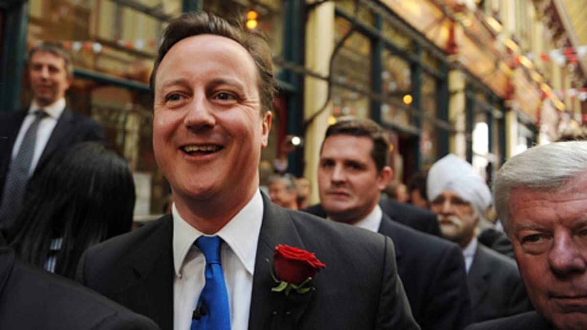 David Cameron, konservatiivit