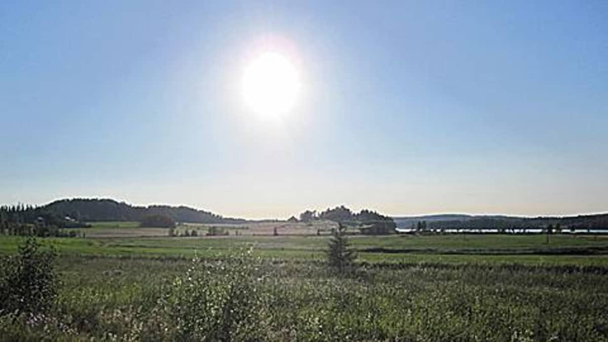 Aurinkoinen kesämaisema
