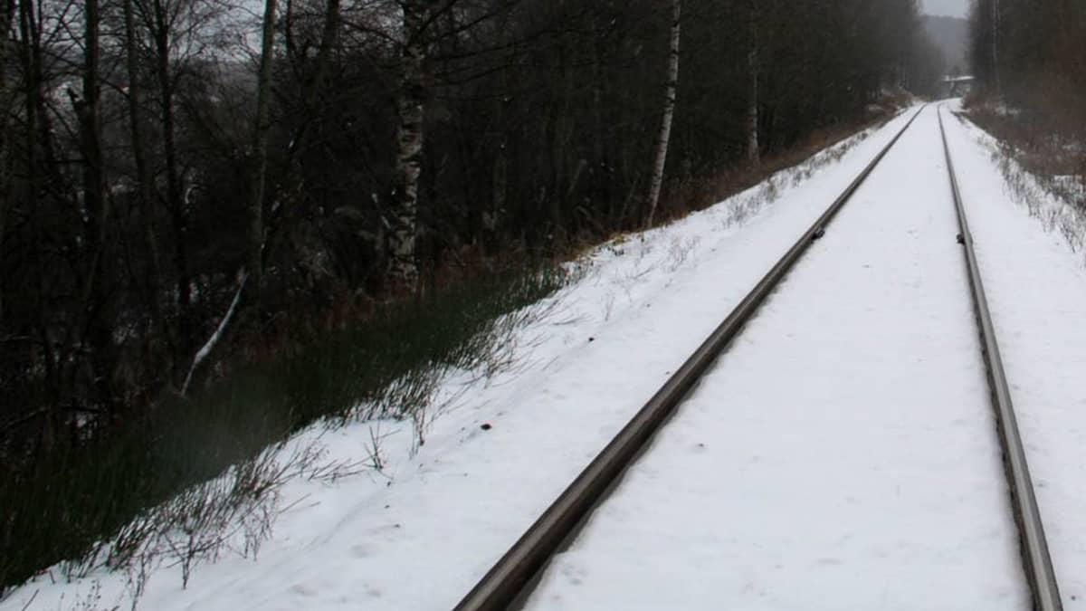 Marraskuinen rautatie.