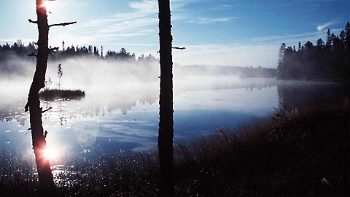 Auringonnousu usvaisen järven yllä