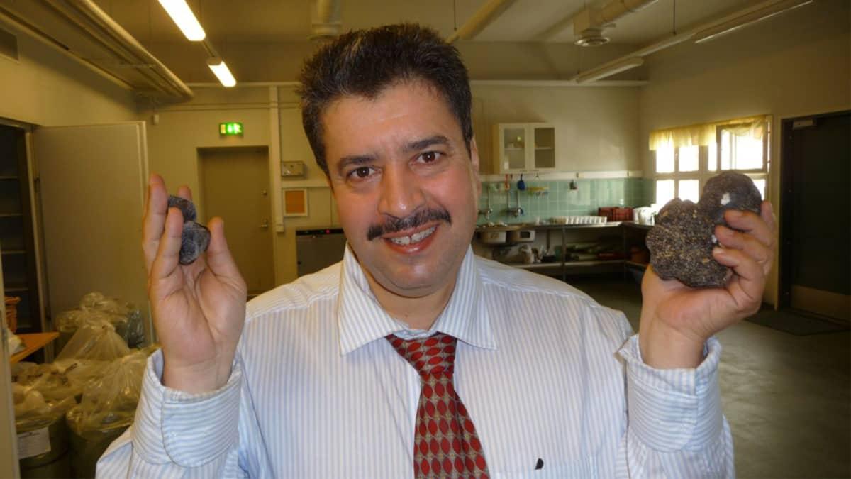 Vasemmalla mustia timantteja, keskellä tohtori Salem Shamekh ja oikealla mustia kesätryffeleitä.
