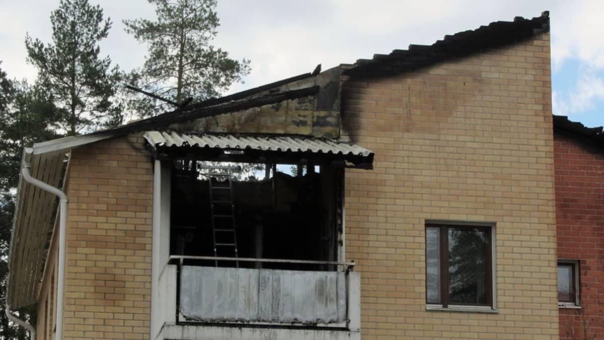 palanut talo