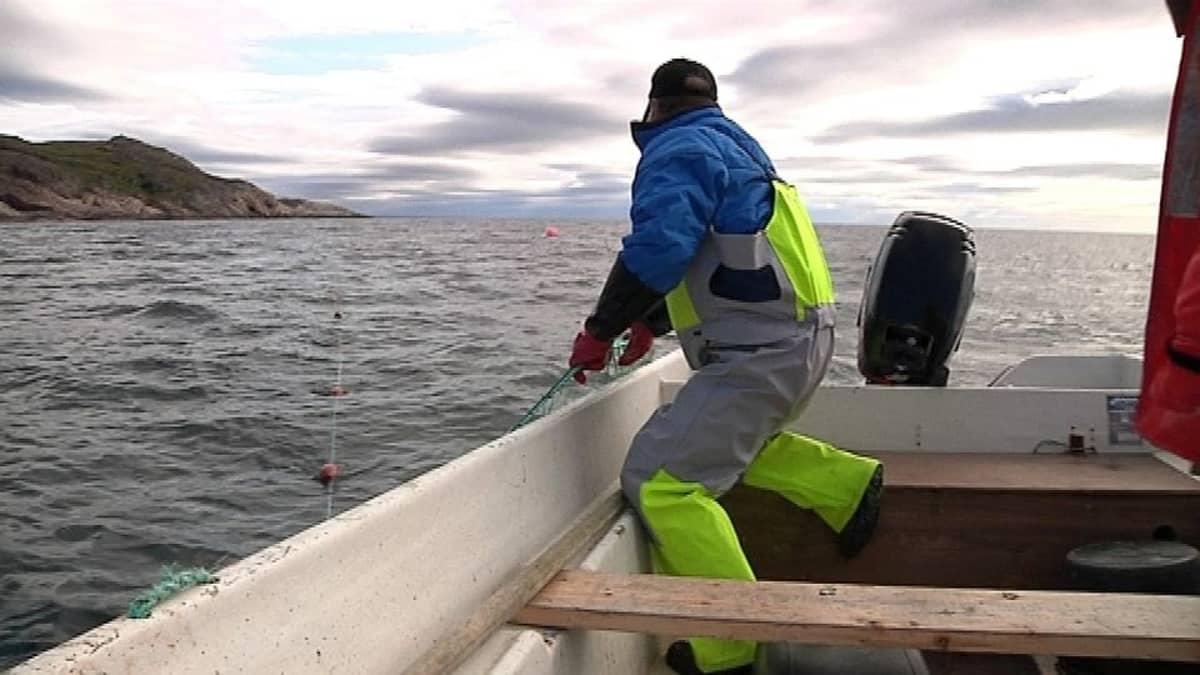 Norjalaiskalastaja pyydksellä
