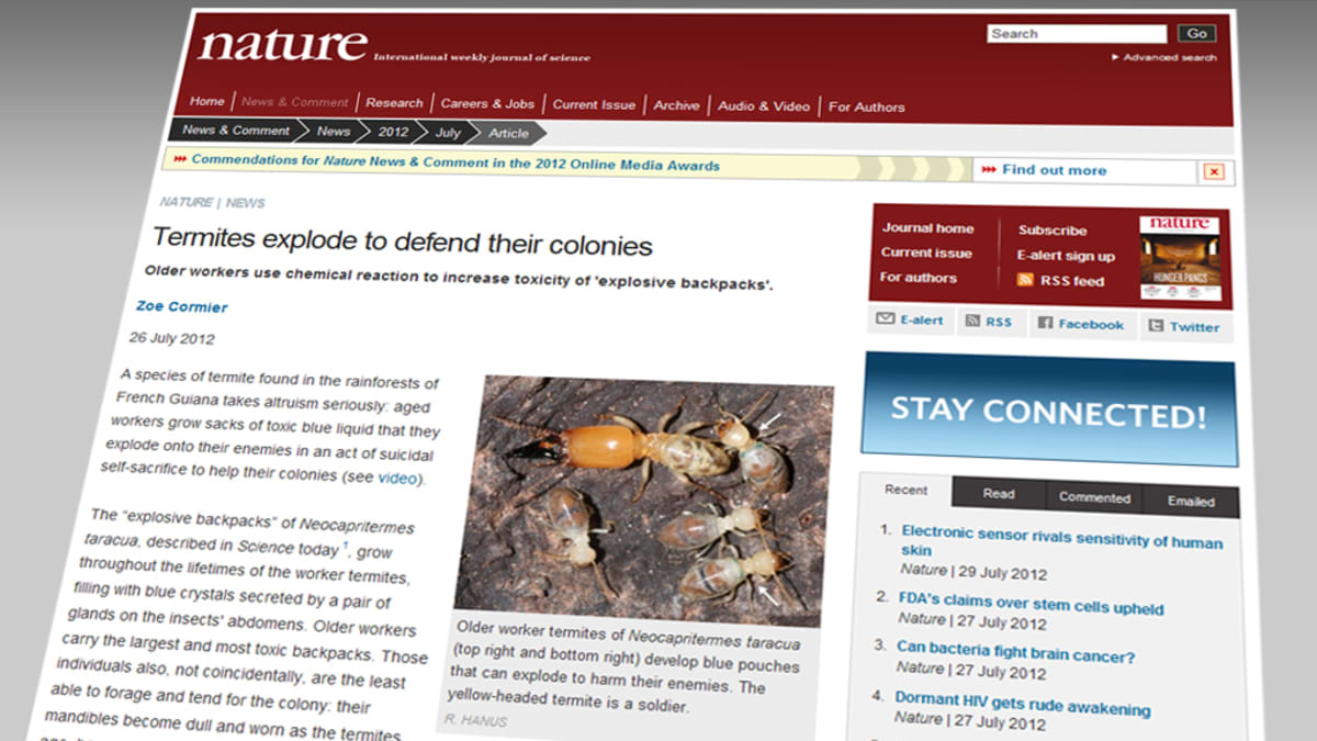 Kuvarevinnäinen Nature-lehden sivulta.