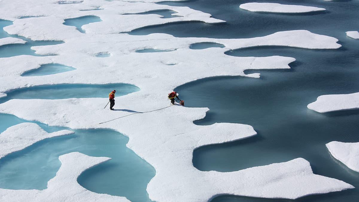 Tutkijat keräävät vesinäytteitä sulaneen jään muodostamista vesialtaista Pohjoisella jäämerellä.