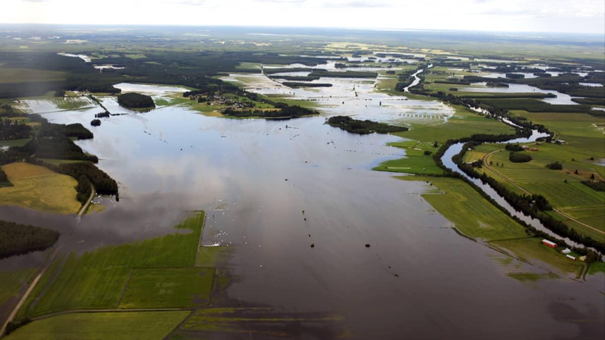 Ilmakuva Siikajoen tulva-alueesta.