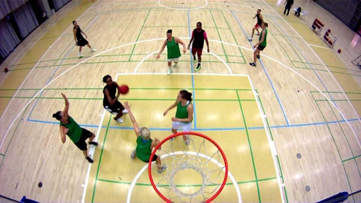 Catzin koripallojoukkue harjoituksissa.
