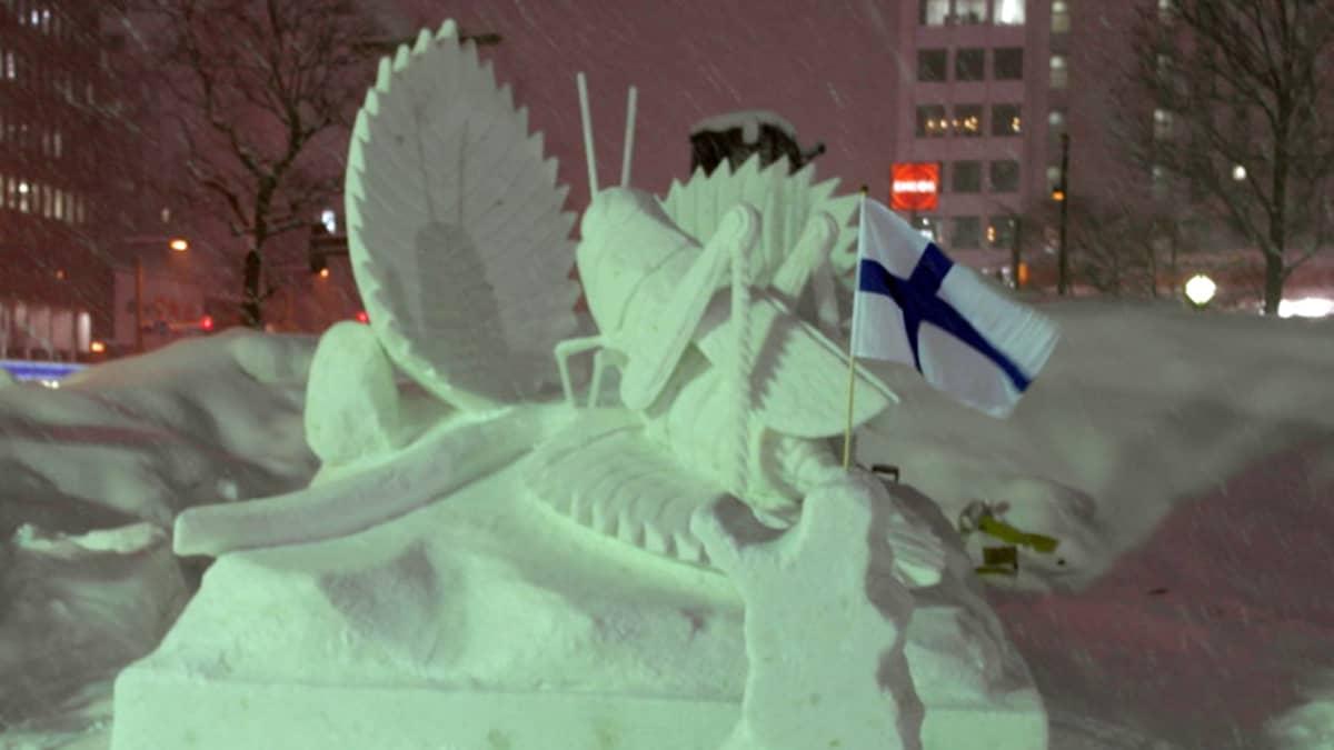 lumivesitos heinäsirkka