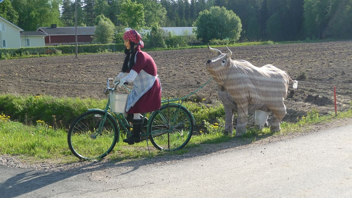 Tilataideteos, jossa pyöräilevä nainen vetää lehmää perässään.