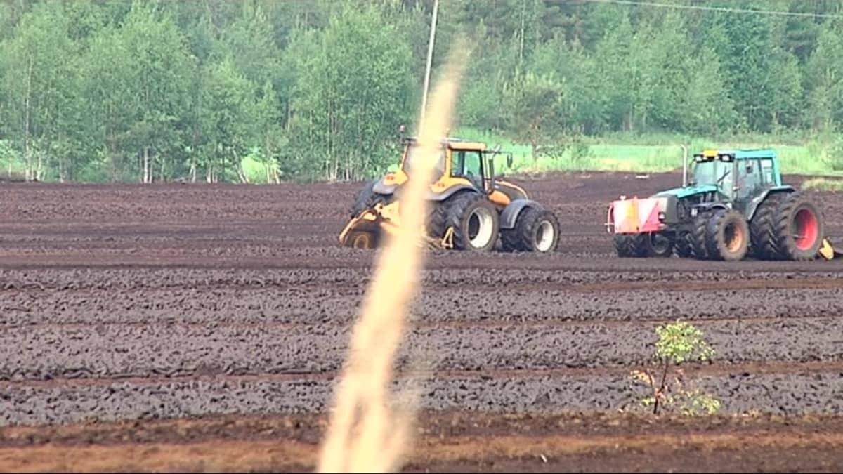 Kaksi traktoria turvepellolla.