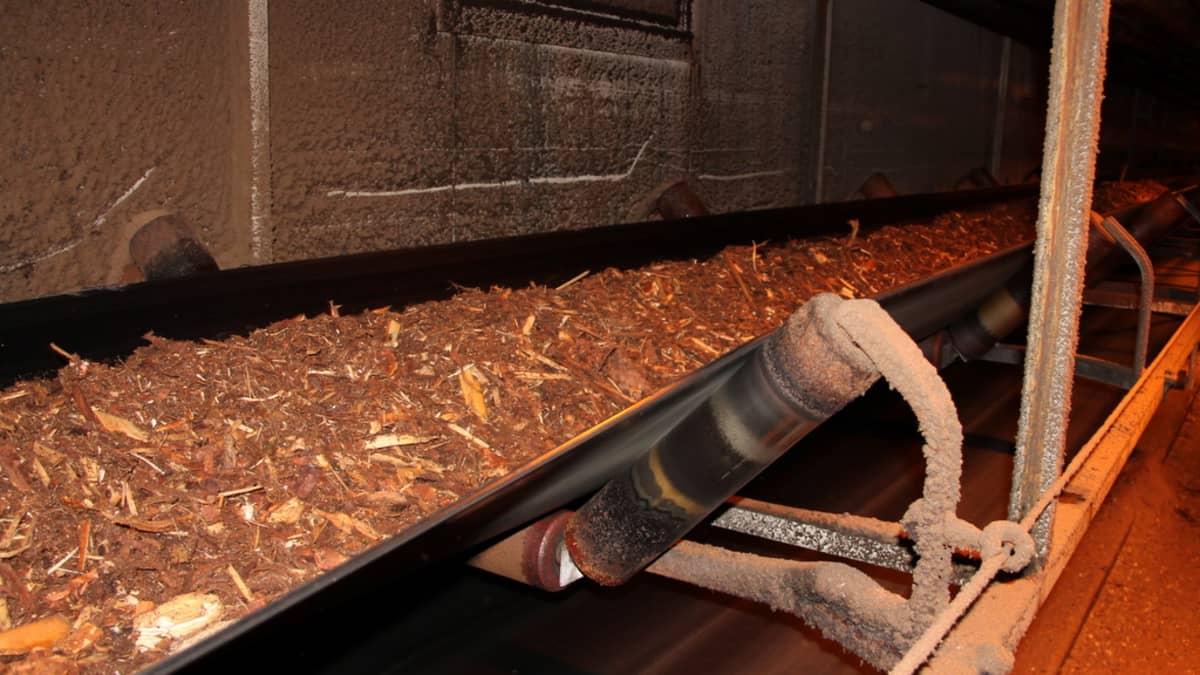 Polttoaineeksi meneviä puunkuoria Kaukaan voiman biovoimalaitoksen kuljettimella.