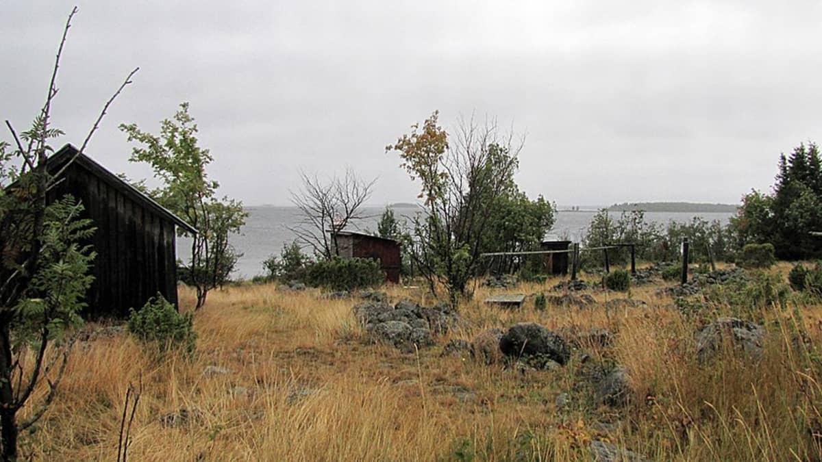 Näkymä Pensaskarista Perämeren kansallispuistosta.