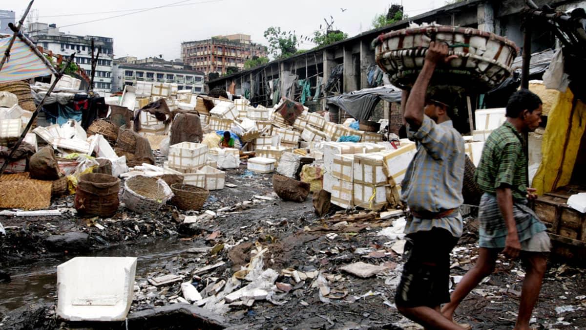 Miehet työskentelevät roskaisella kalatorilla Intian Kalkutassa.
