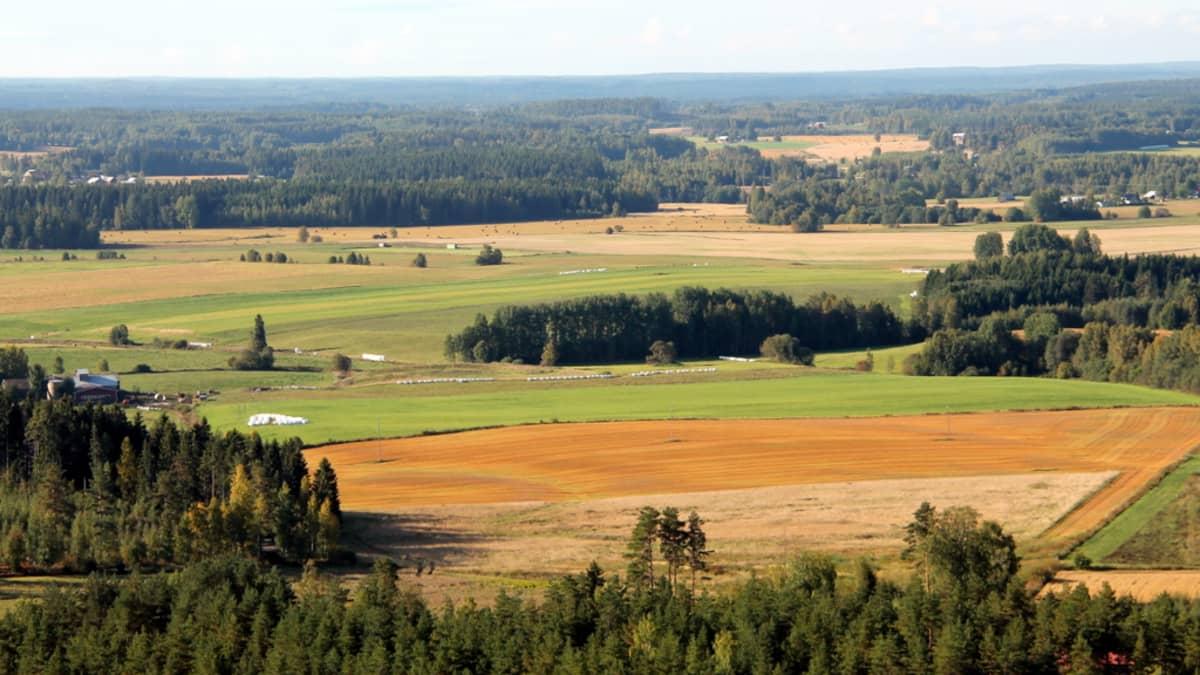Peltomaisemaa Joutsenossa Lappeenrannassa syyskuussa 2013.