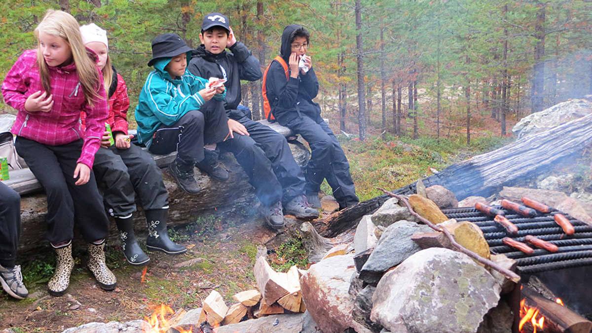 Vaaranlammen peruskoulun neljännen luokan oppilaat metsäkävelyllä