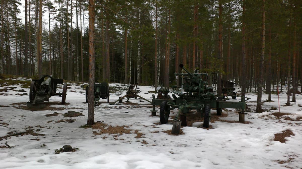 tykistöä metsässä