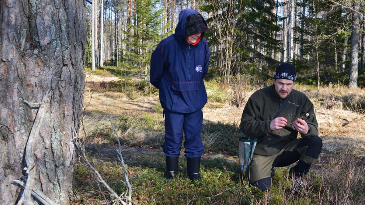 Aune Korhonen ja Timo Pisto vanhan männyn vieressä