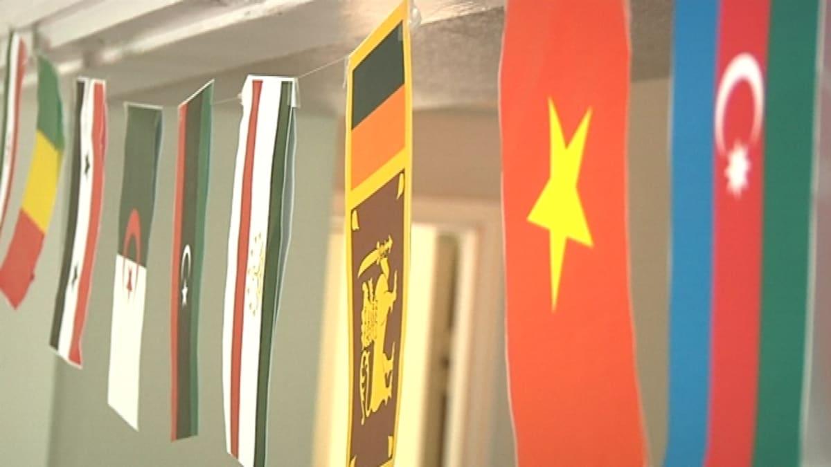 Eri valtioiden pikkulippuja.