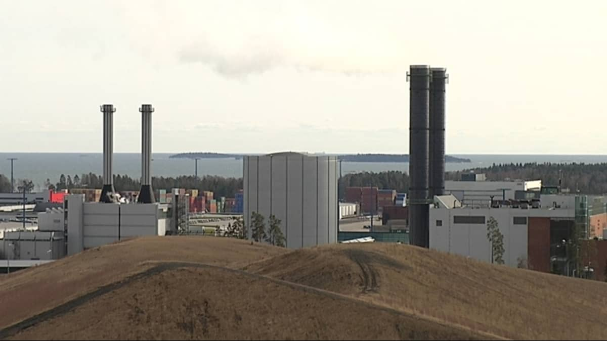 Helsingin Energian Vuosaaren maakaasuvoimala, jonka edessä on kasvuston päällystämiä kivihiilikasoja.