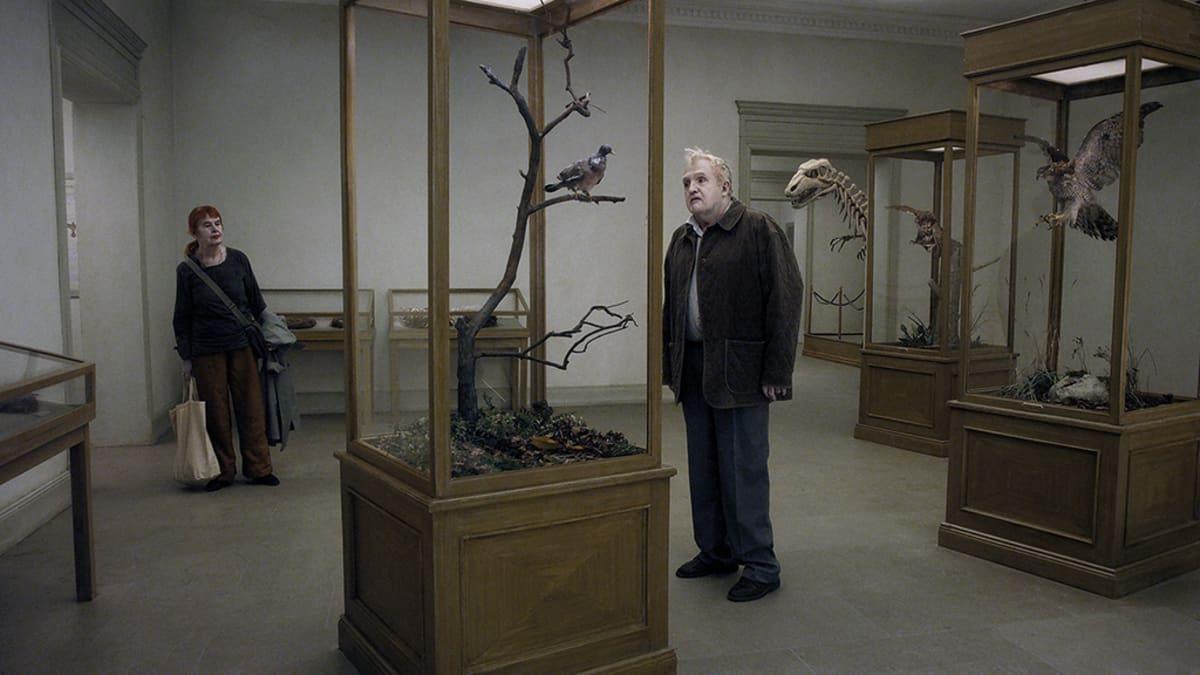 """Kuva elokuvasta """"En duva satt på en gren och funderade på tillvaron"""""""