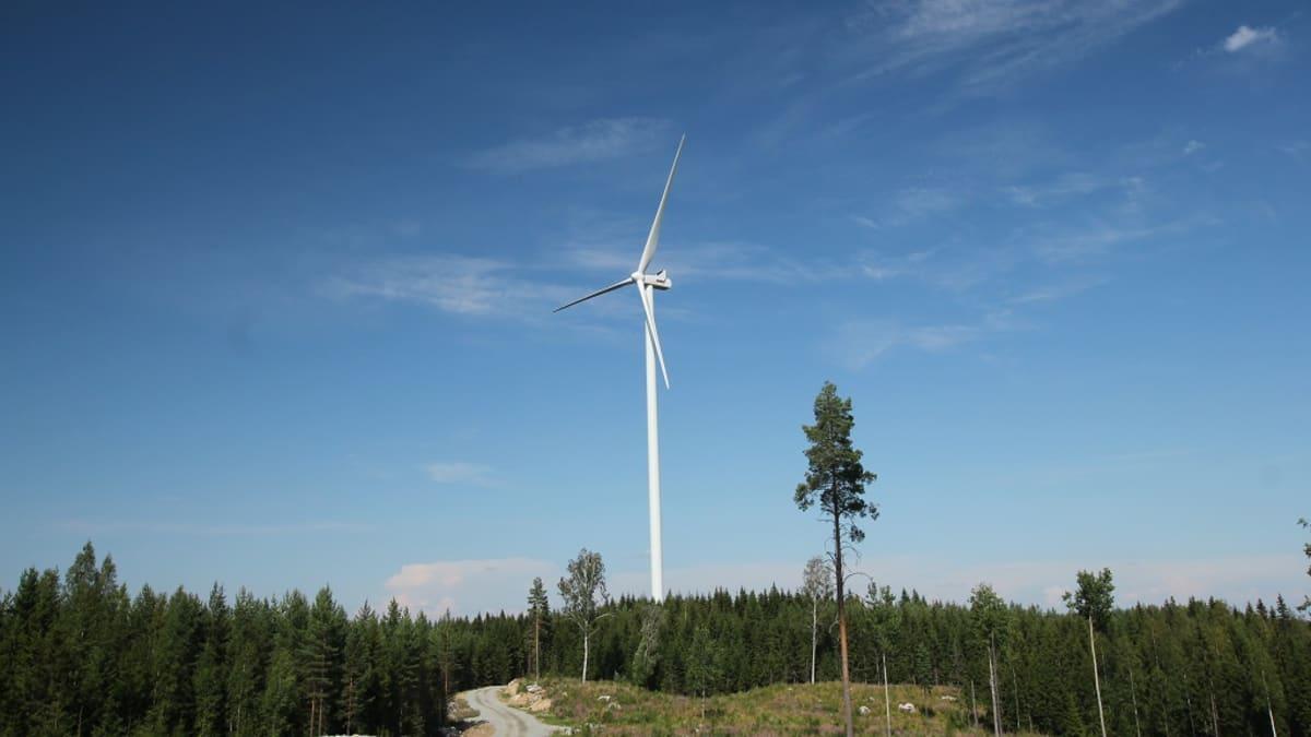 Luhangan tuulivoimapuisto sijaitsee Latamäessä.