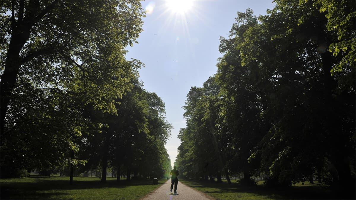 Mies juoksemassa aamuisessa puistossa.