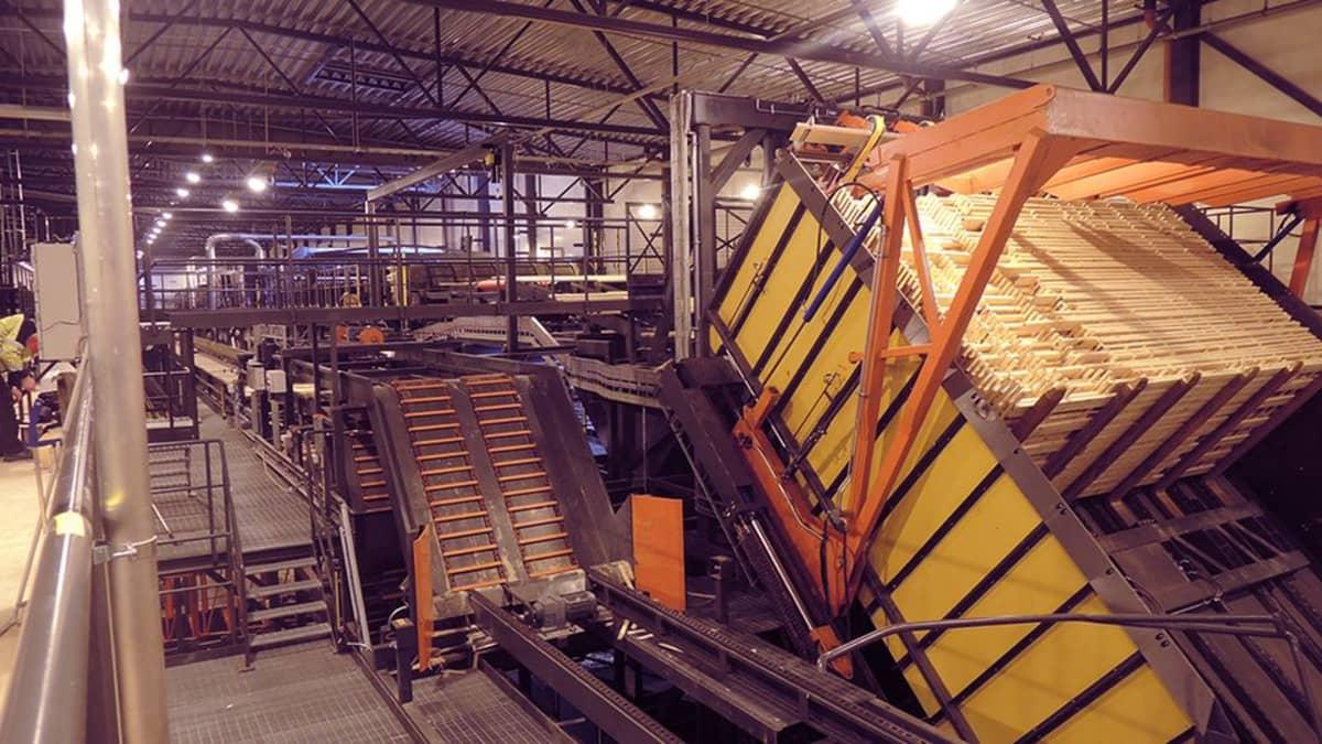 Lappi Timber Oy:n kuivaamo