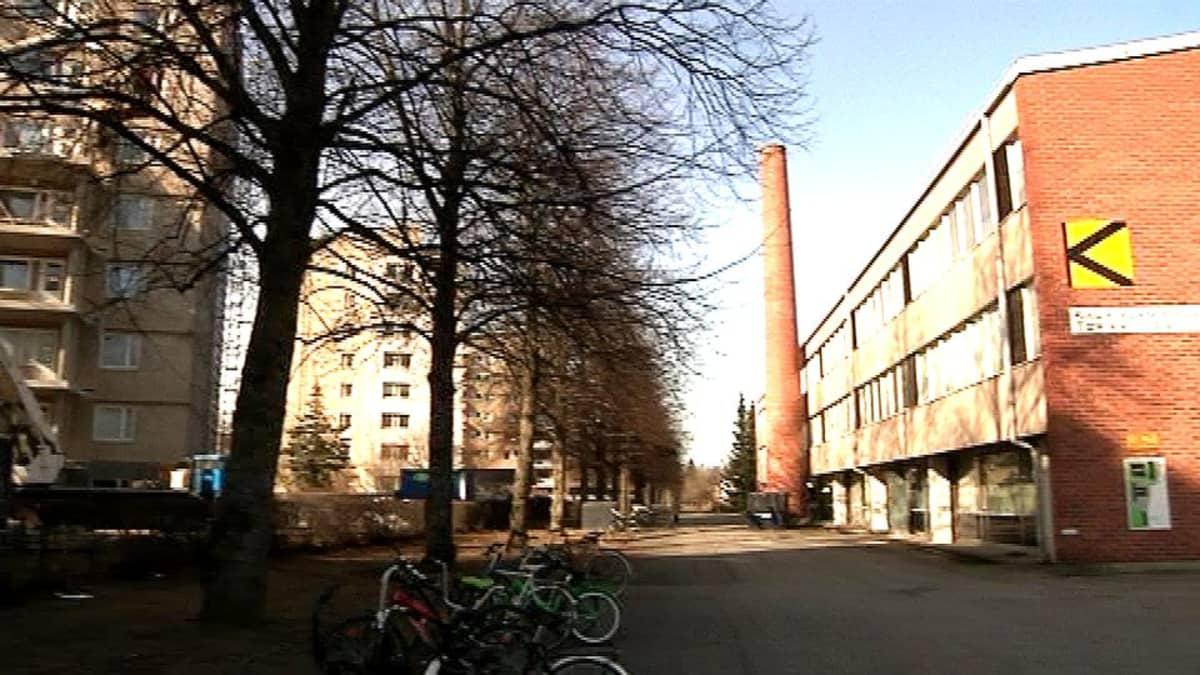 Kaurilan koulu sijaitsee Parolantien tornitalojen takana Hämeenlinnassa.
