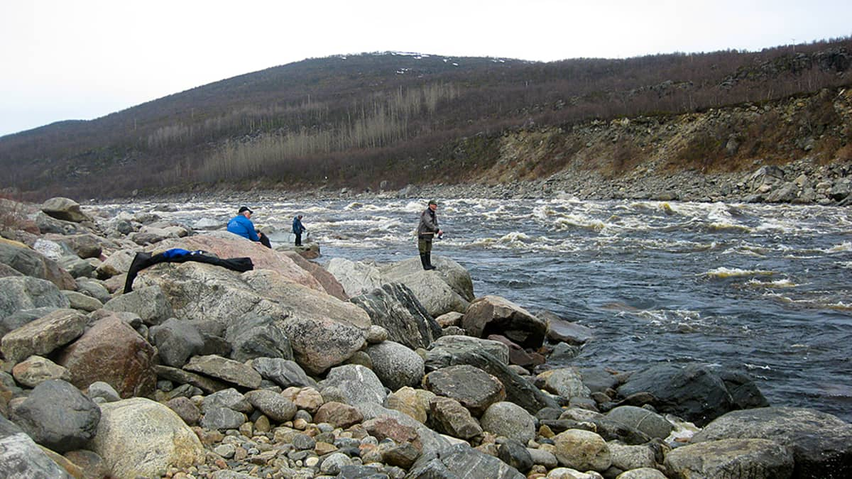 Kalastajat Tenojoen Alaköngäällä