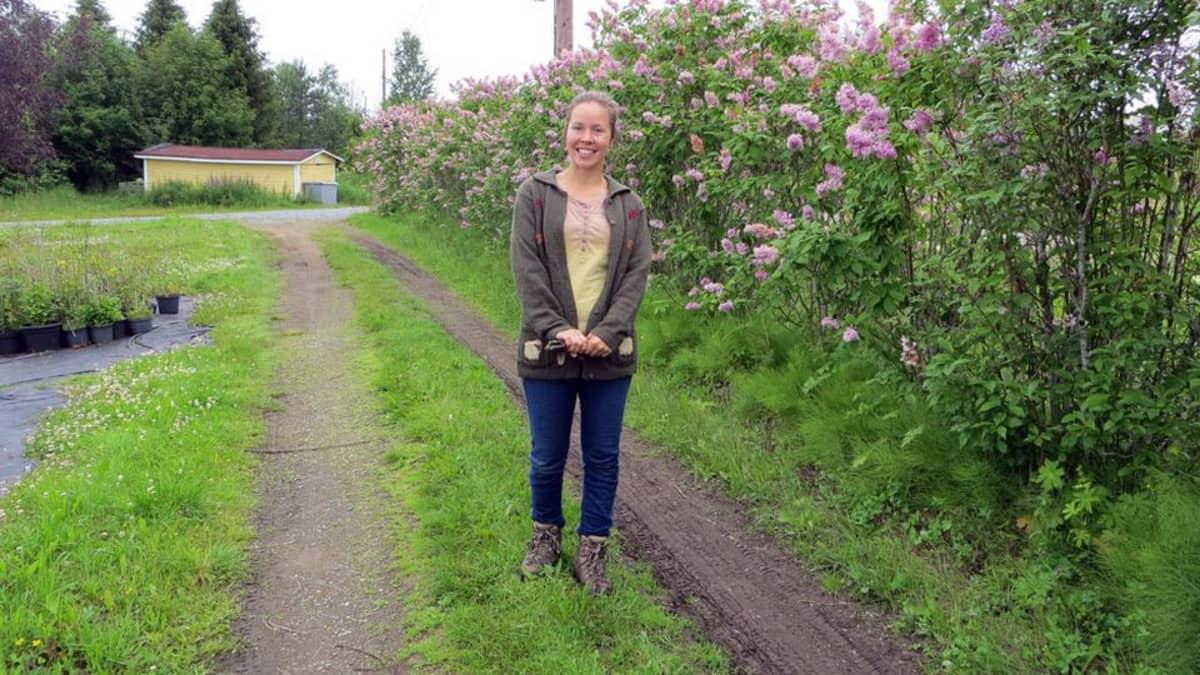 Silja Kroschel ja vapaasti kasvava syreeni-aidanne