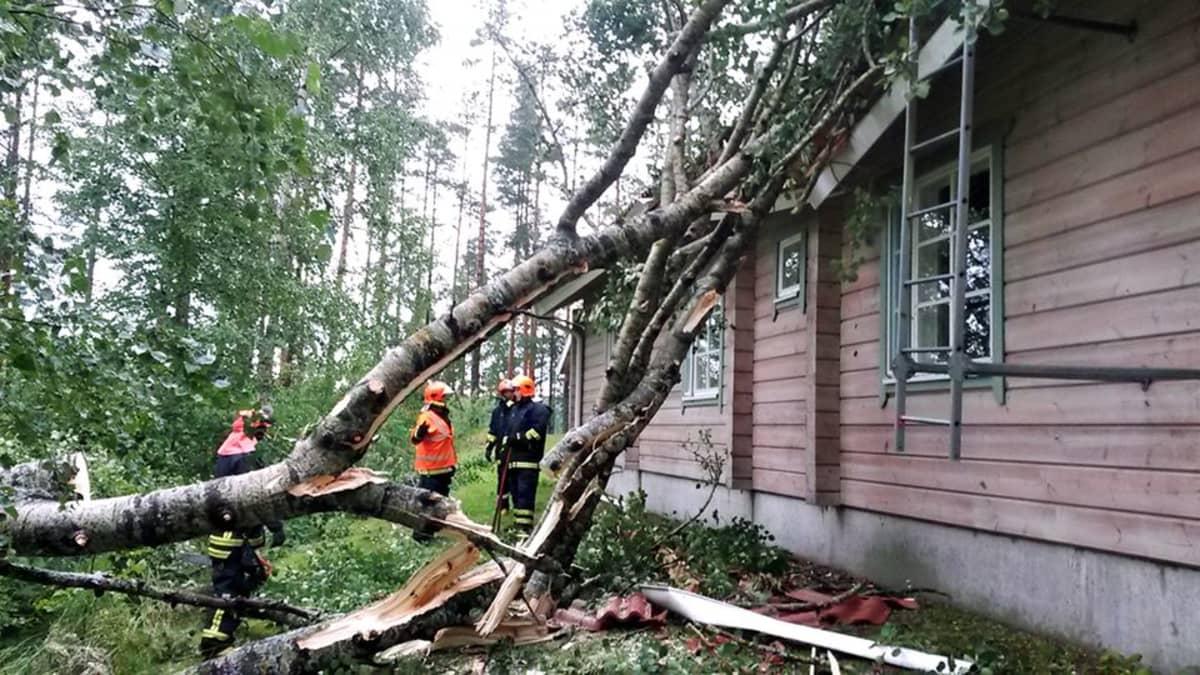 Ukkosmyrsky Mäntyharjulla kaatoi  puita.