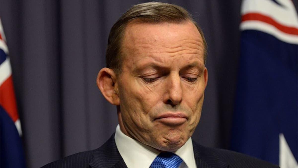Tony Abbott katse alhaalla.