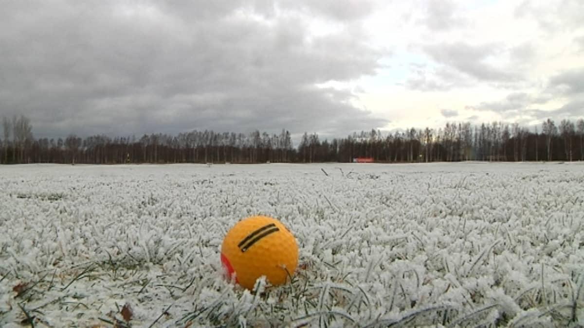 Golfpallo huurteisella nurmikolla