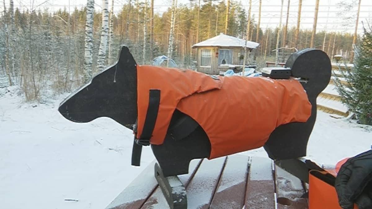 Mäntyharjulaisen keksijä Jussi Aron uusin versio susilta suojaavasta koiran suojaliivistä.