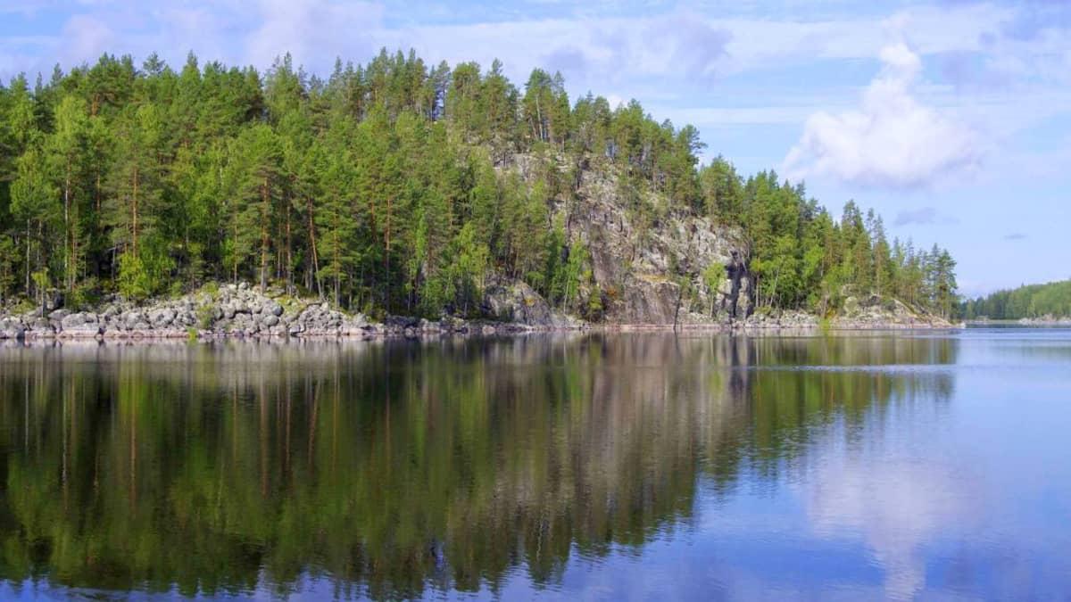 605 henkilöä mielii lammaspaimeneksi Koloveden maisemiin Etelä-Savoon.