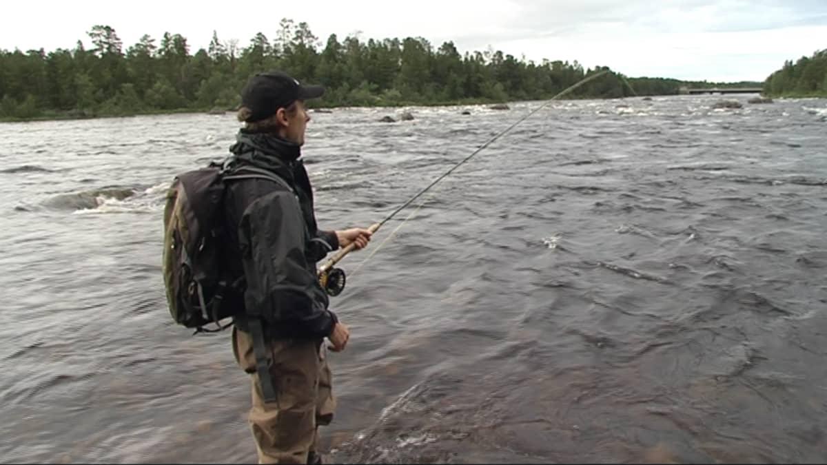 Heikki Nikula kalastaa Juutuanjoella Inarissa heinäkuussa 2016.