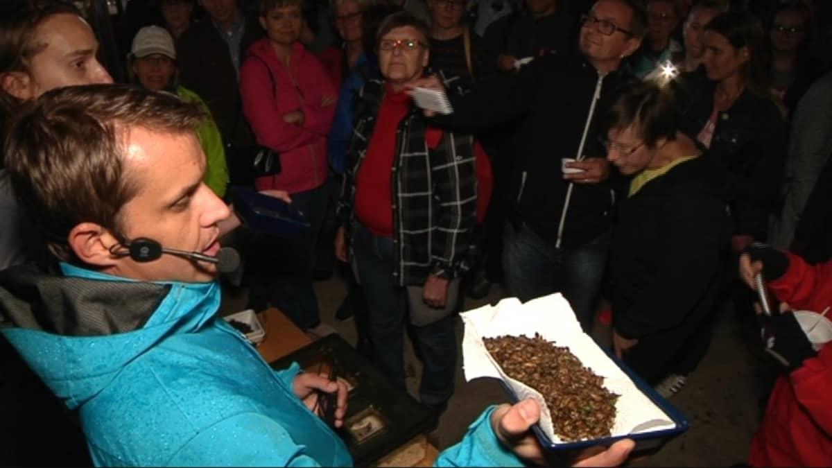 Mies esittelee syötäviä hyönteisiä lautasella